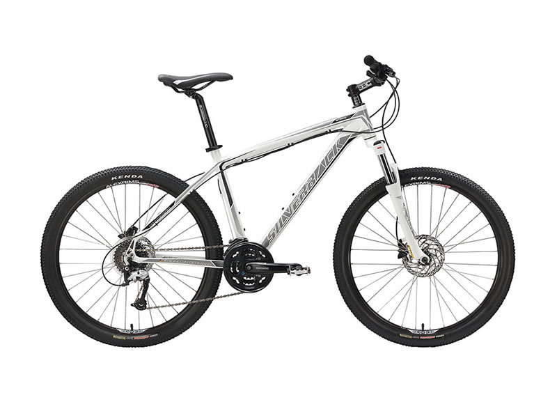 bicycle rental cape town - Silverback Stride - 26er