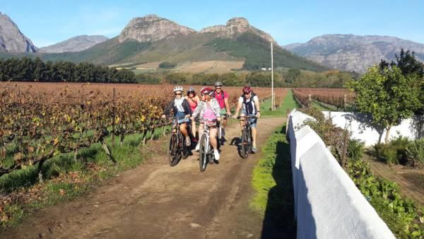 bicycle wine tour