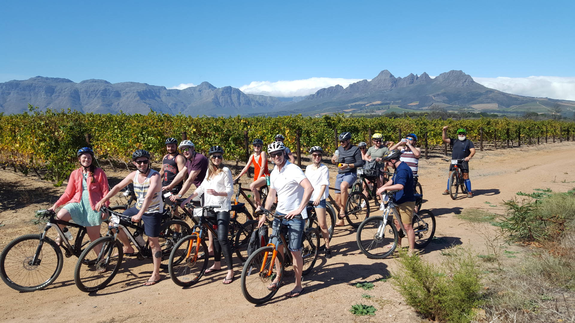 cape town bicycle tour wine and bike