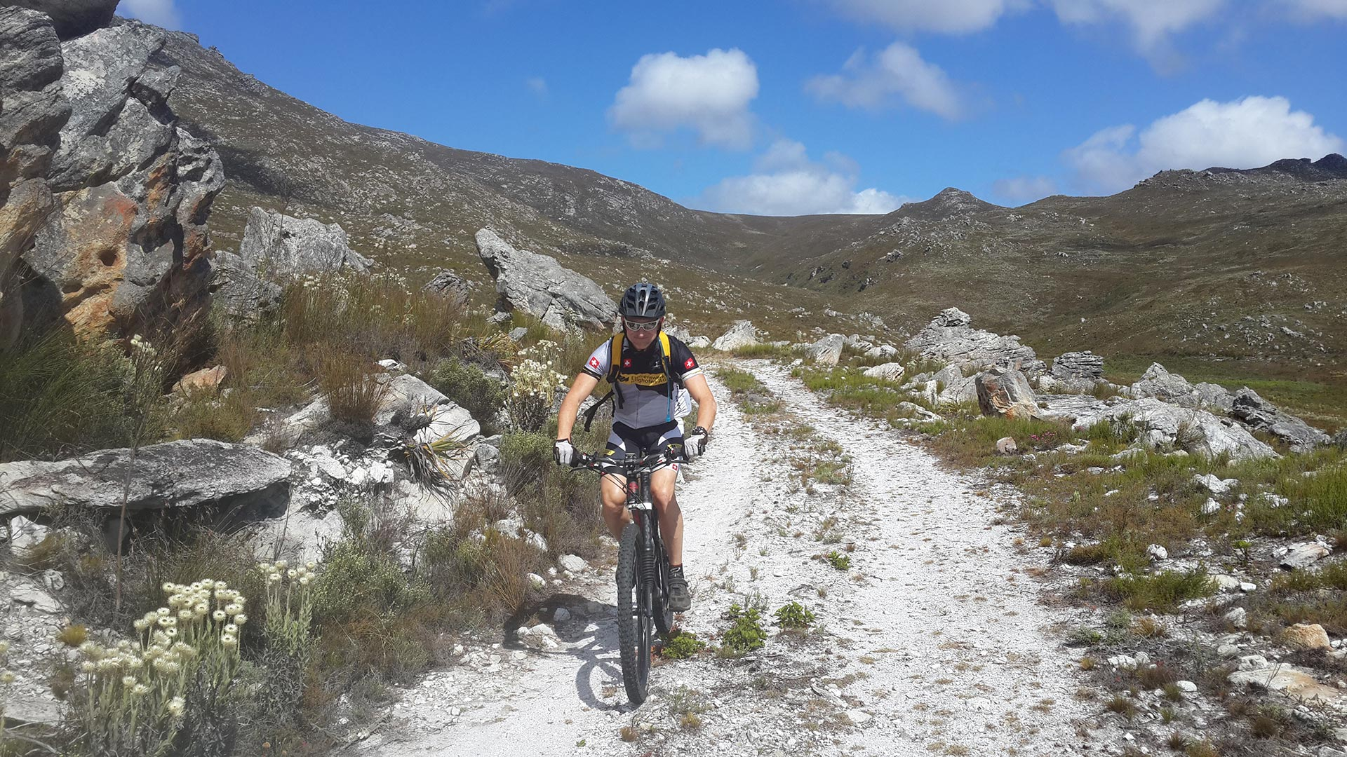 cape town bicycle tours 2